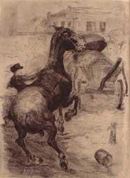 Scheues Pferd